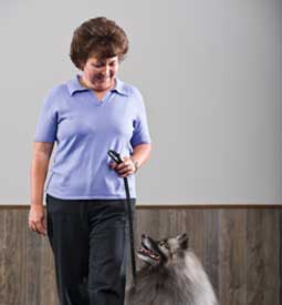 Dog Obedience Trainer/Instructor Diploma Program
